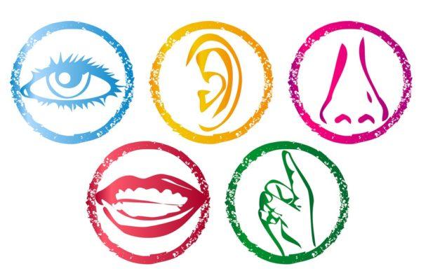 5-senses